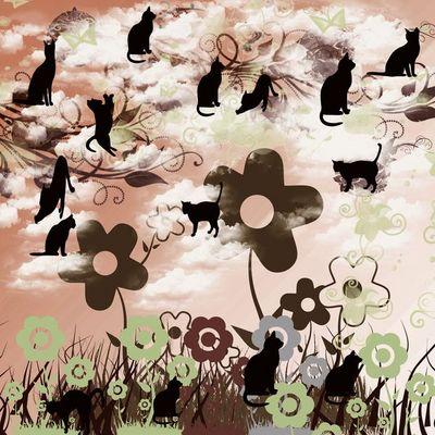 ネコと花と夕日.jpg